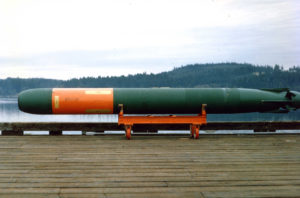 A Mark 48 torpedo sitting on a cart in front of water